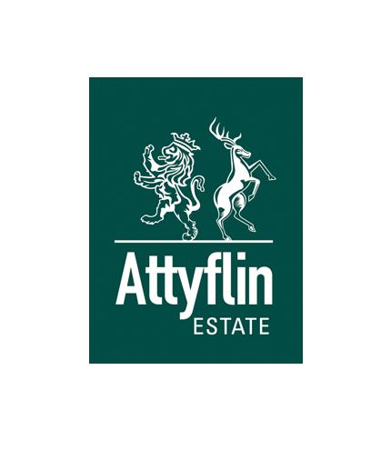b_attyflin_logo_design